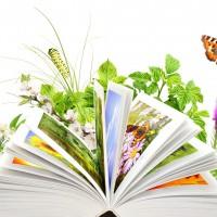 Примите поздравления  с профессиональным праздником — Днем эколога!
