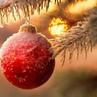 Предстоящий Новый год пусть согласие несет. И с друзьями, и с погодой,  и с работой, и с ПРИРОДОЙ. Кто в согласии живет, счастье в жизни обретет!
