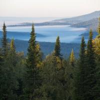 Нацпроект «Экология» получил паспорт. Как Россия будет сохранять свои природные богатства