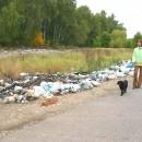 Госинспекторы смогут выписывать штрафы за экологические нарушения граждан