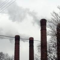 Опрос ВЦИОМ: каждый пятый считает, что в их местности нет экологических проблем