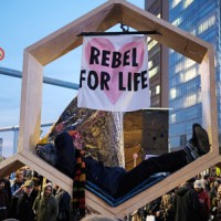 Сотни арестов экологических активистов в десятках мировых столиц
