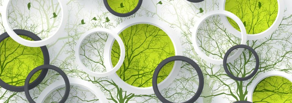 Национальной экологической аудиторской Палате — 15 лет!